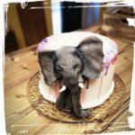 Motivtorte Elefant